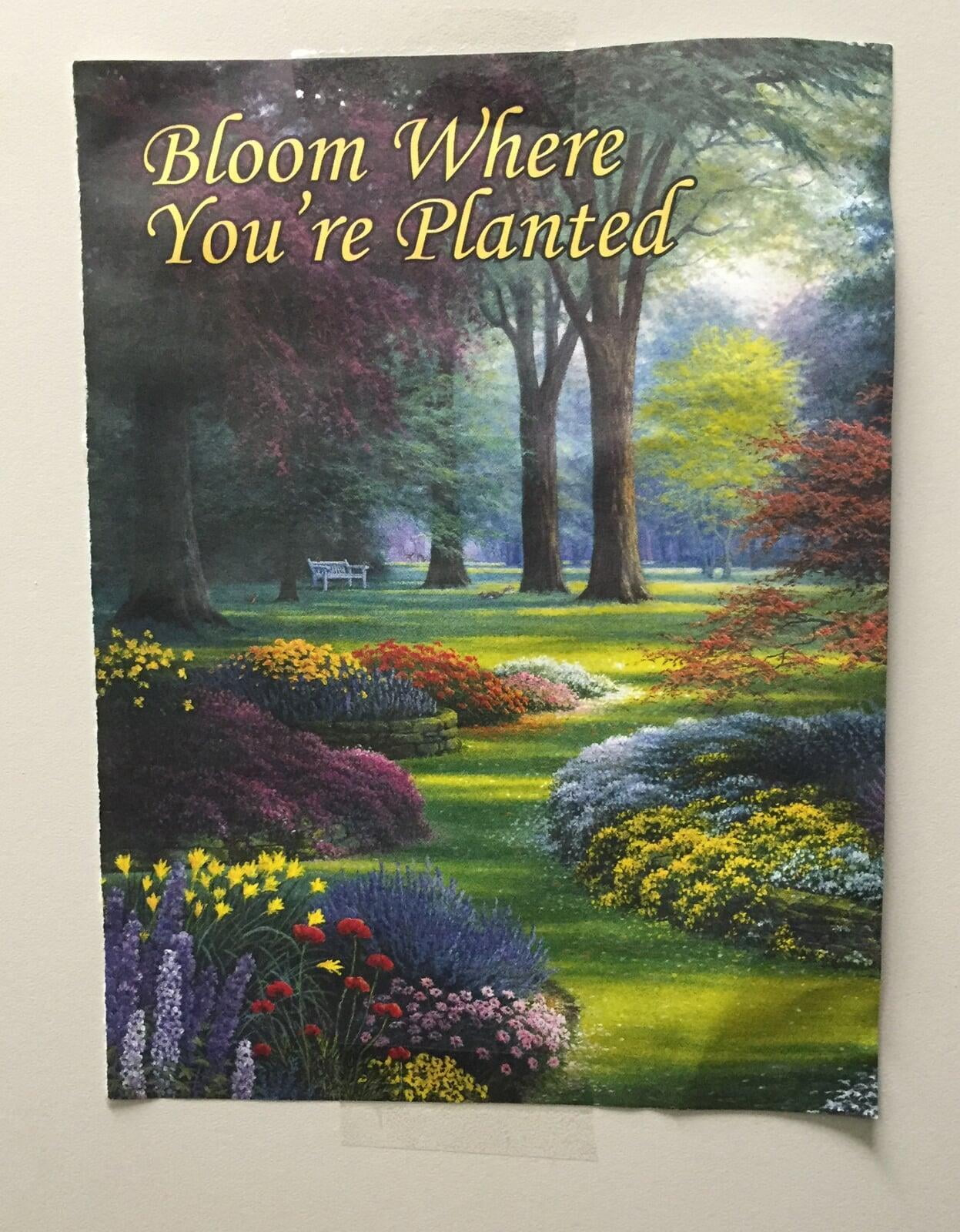 Learn how to stay encouraged and bloom where you're planted on www.MusicOnACart.com